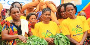 Transformation of Agriculture in Africa